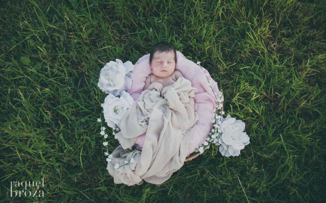 newborn suri